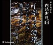 "Miyazawa Kenji's reading road ""Magnolia tree"""