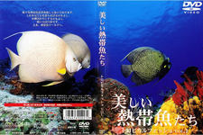 Beautiful tropical fish our tropical Vol.1