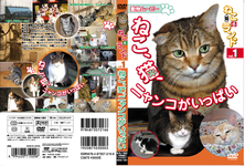 Neko (CAT) various land 1 cat, filled the nyanko cat,-part 1