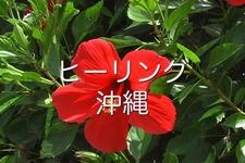 ヒーリング沖縄Vol.1~本島編~