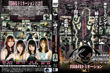 M格闘 関節技ドミネーション Vol.1