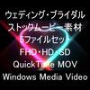 映像CG ウェディング&ブライダル動画セット
