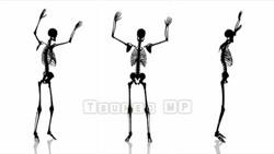 Image CG skeleton Skeleton