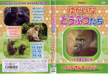 Yukaina their animal-Gorilla, APE-chimpanzee-