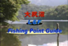 Large asses Marsh L & F fishing points Guide