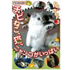 Guess AI Kozaki Chibi land vol.3 cat, filled with the nyanko cat,